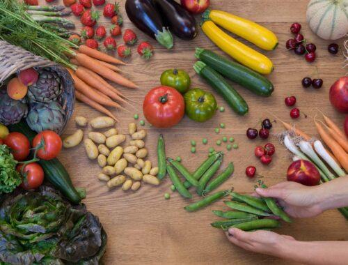 Prévention hivernale article aliments vivants